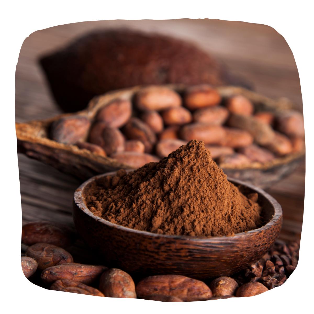 antioxydant naturel cacao